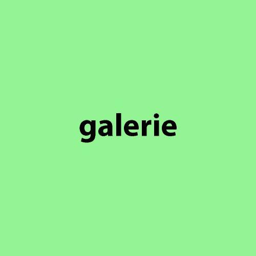 galerie_flaeche