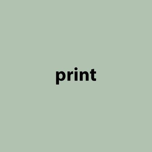 print_flaeche